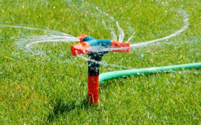 Proposed Watering Ban Angers Citizens